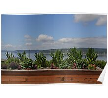 #1 University PlaceTour of Gardens - Backyard View of the Puget Sound Poster