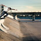 Stefan Janoski - Switch Crook by asmithphotos