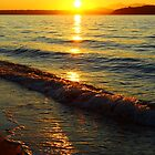 On the Autumn Shores of Alki Beach, Seattle WA by VimanaVisual