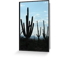 Silent Saguaro Warriors  Greeting Card