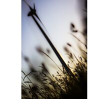 The Wind In The Willows Photographic Print
