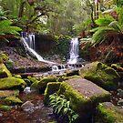 Horseshoe Falls - Mt Field National Park - Tasmania by Anthony Davey