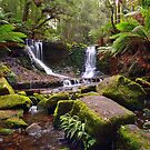 Horseshoe Falls - Mt Field National Park - Tasmania by Anthony Davey