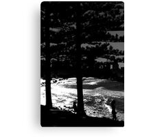 It Could Be Anywhere But It Is  Burleigh Heads Canvas Print