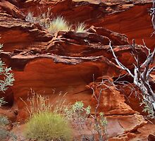 Ochre in the Red Centre by myraj