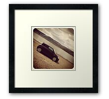 Lakeside Swift Framed Print