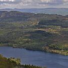 Loch Achray by Donald  Stewart