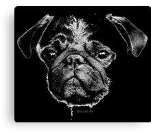 mops puppy white - french bulldog, cute, funny, dog Canvas Print