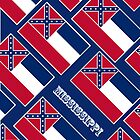 Iphone Case - State Flag of Mississippi - Diagonal by Mark Podger