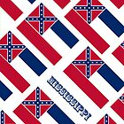 Iphone Case - State Flag of Mississippi - Diagonal III by Mark Podger