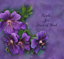 Purple is for Peace of Mind by greyrose