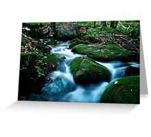 Moss Covered World Greeting Card