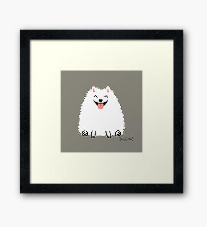 Fluffy White Pomeranian Framed Print