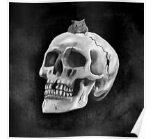 Cracked skull with mouse BW Poster