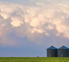 Mammatus Country Landscape by Bo Insogna