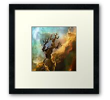 Trees III:  Reaching For the Stars Framed Print
