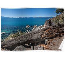 At Secret Harbor - Lake Tahoe Poster