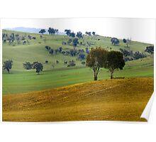 Rural Scene - Khancoban, NSW Poster