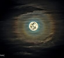 Moon (High Dynamic Range) by pendleypictures