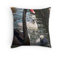 Swan and Cygnets - Lake Burley Griffin Throw Pillow