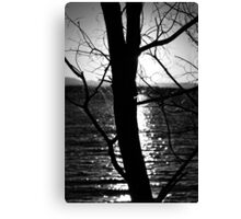 Sunset Silhouette - Lake Samsonvale Canvas Print