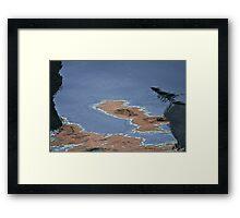 Tilting Pine Framed Print