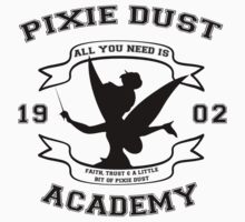Pixie Dust Acadamy by Heather Saldana