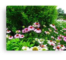 Butterfly Inn Canvas Print