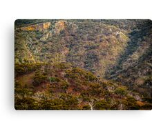 View from the Highway. Canvas Print