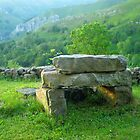 The stone throne by Dulcina
