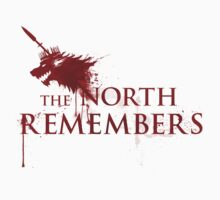 The North Remembers by Zombieflask