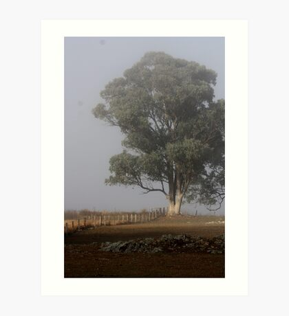 Ghostly Gum, Gulgong NSW Art Print