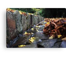 The Touch Of Winter Canvas Print