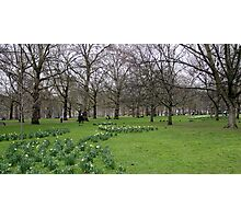 Green Park Photographic Print