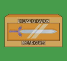 Zelda - Break Glass by theJackanape
