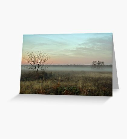 Foggy Texas Morn Greeting Card