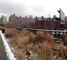The High Line, NYC by jcjc22