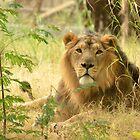 The Pensive King by Ikramul Fasih