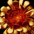 Golden Aeonium Glow by Yampimon