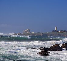 Point Piedras Blancas by Cathy L. Gregg