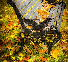 Bench in the Fall (Spokane) by StudlyMuffin