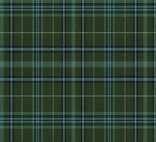 02799 Washington County, Minnesota E-fficial Fashion Tartan Fabric Print Iphone Case by Detnecs2013
