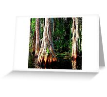 The Great Cypress Greeting Card