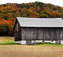 Barn with Fall Foliage by naturesangle