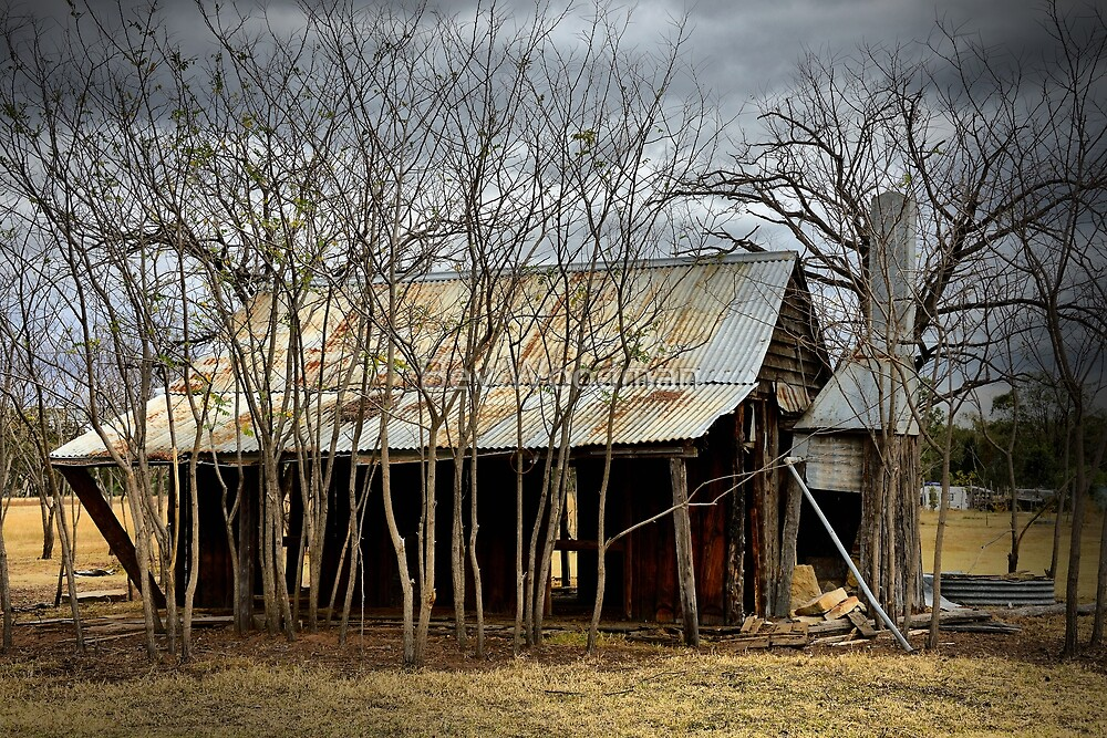 The Old Shack - Premer NSW Australia by Bev Woodman