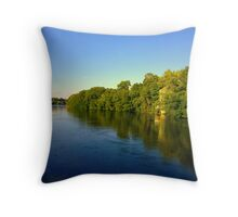 Happily Never After Throw Pillow