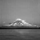 Mount Rainier by Julie Shanahan