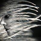 Wind Spirit by Julie Shanahan