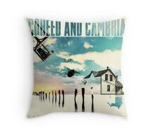 COHEED CAMBRIA COLOR BEFORE SUN ALBUMS Throw Pillow