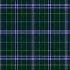 02811 Mahoning County, Ohio E-fficial Fashion Tartan Fabric Print Iphone Case by Detnecs2013